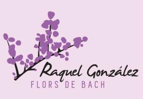 Cursos Raquel Gonzalez