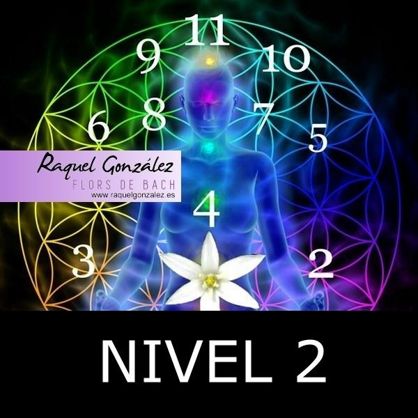 Curso de Flores de Bach y Numerología Tántrica Nivel 2