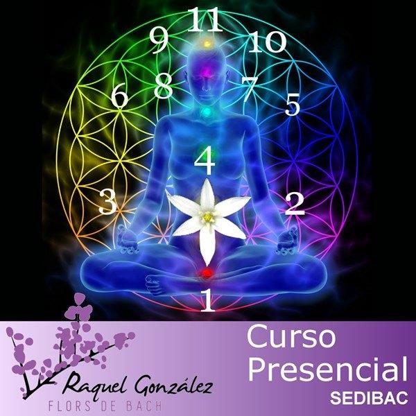 Curso de numerologia tantrica para terapeutas florales