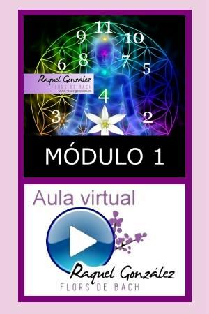 Módulo de especialización en Numerología Kármica